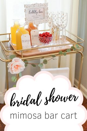 bridal shower mimosa bar cart, strawberry chic